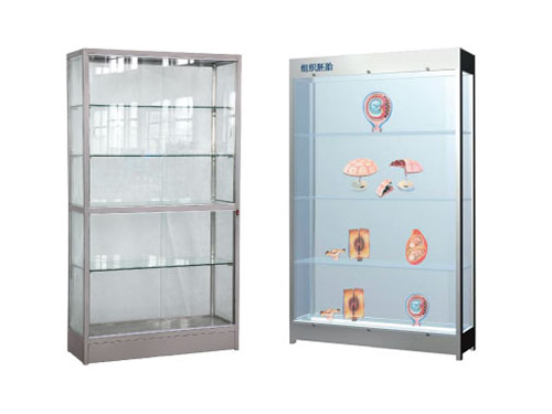 Stainless steel specimen display cabinet